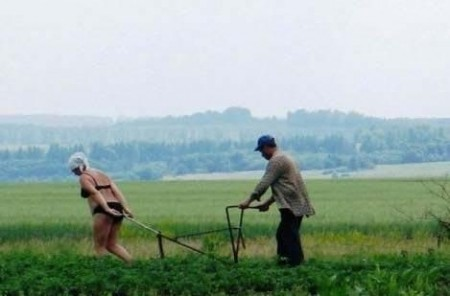 Woman pulling plough in Russia